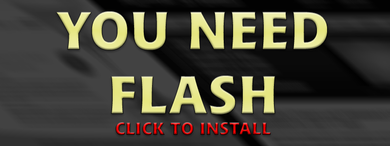 No flash installed